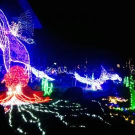 クリスマスJazzコンサート in イルミネーション2015
